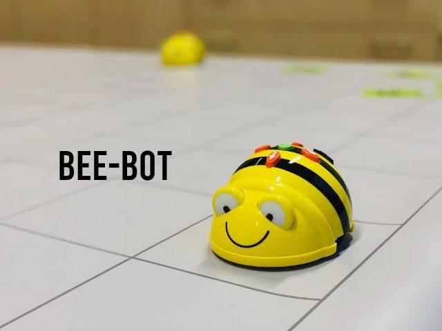 Bee-Bot staat op een vlak
