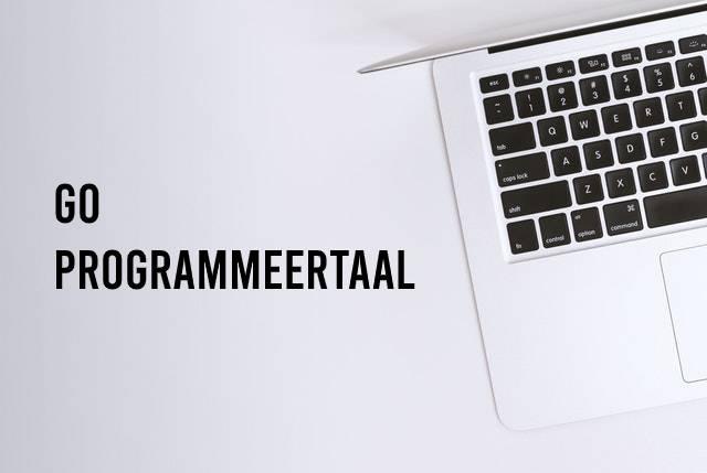 Go programmeertaal, hoofdafbeelding