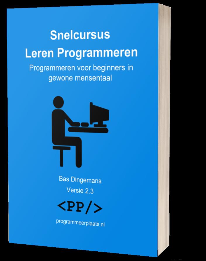 Snelcursus Leren Programmeren cover 2.3 3D