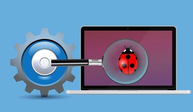 Bug lieveheersbeestje laptop