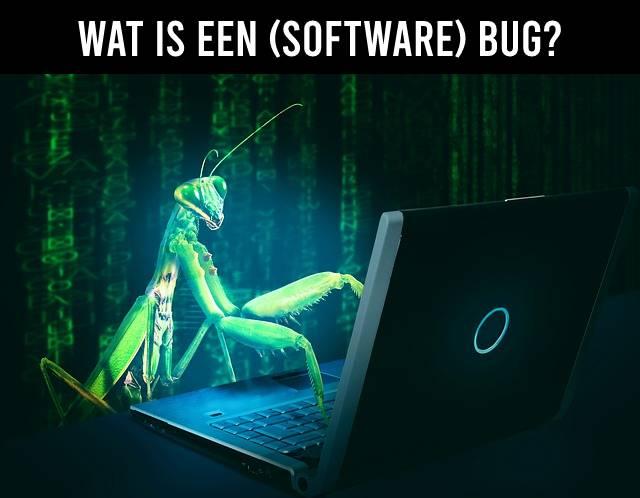 Wat is een (software) bug?